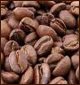 Coffee Robusta